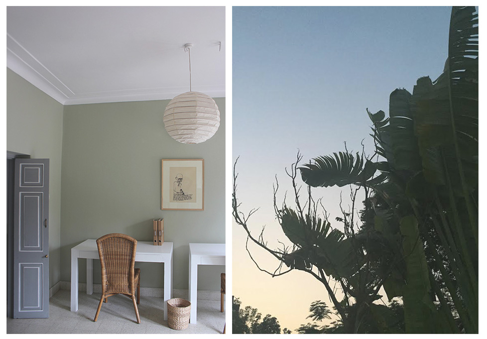 natural, office, green, design