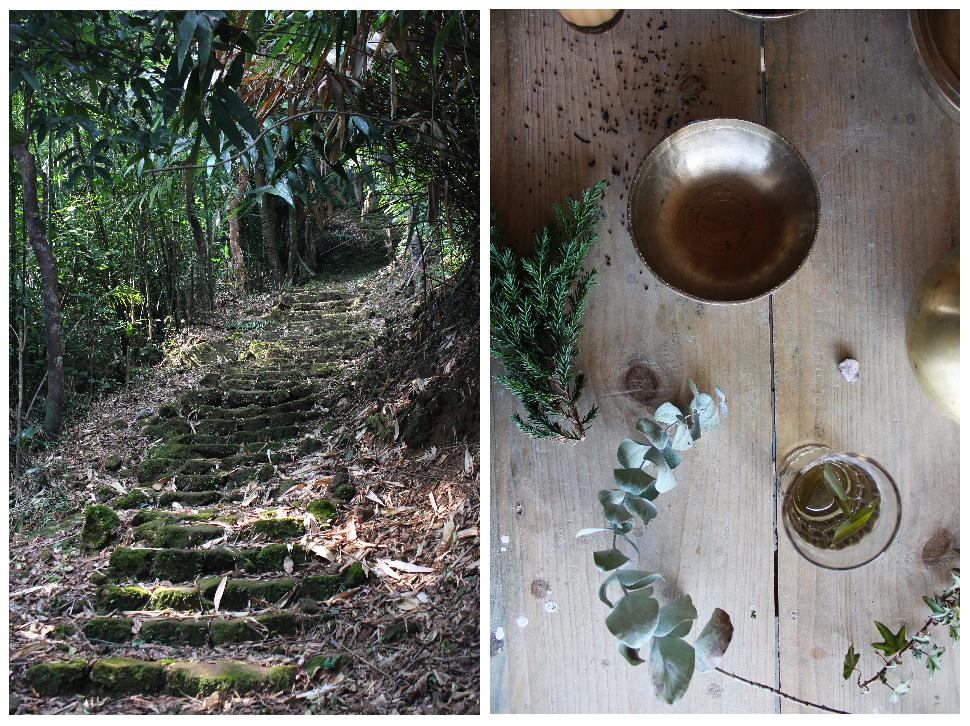 forest, natural decor, traditional decor, Indian design, kansa, tea glasses