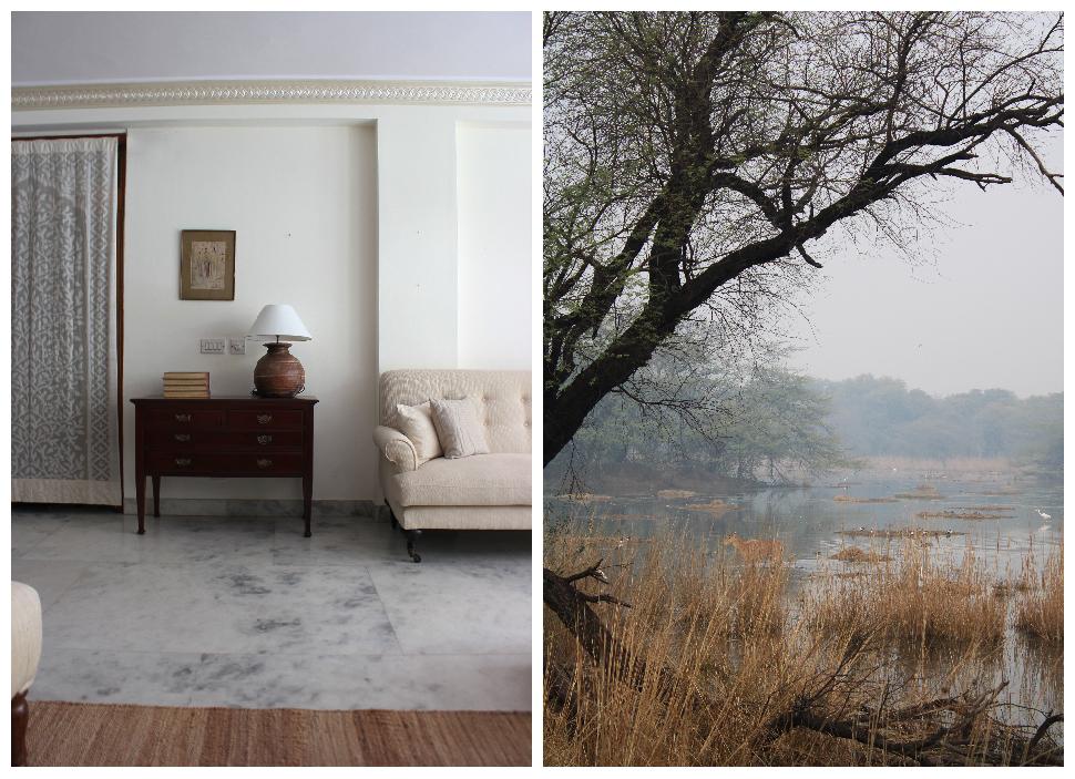 living room, natural decor, traditional decor, home