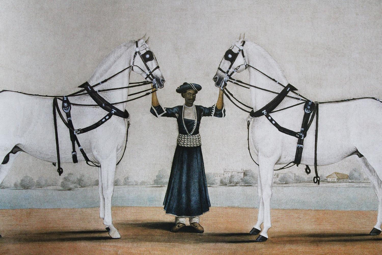 Forgotten Masters, Shivani Dogra, Company School, Indian Art, Indian Interior Design, Delhi Design,